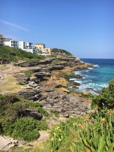 beach-costal-walk